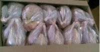BRAZIL HALAL FROZEN WHOLE CHICKEN- FROZEN CHICKEN