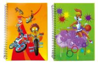 pp  cover notebook F4 A4 A5 B5 B6with hardcover sparil notebook wire-o notebook korean
