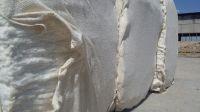 CIS Raw Cotton