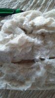 Raw cotton from Tajikistan, Kyrgyzstan