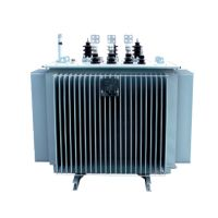 S11-M Series Three-phase 11kv 160kva Power Transformer