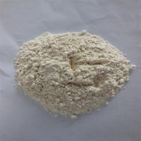 sell rice protein