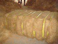 High Premium Quality Coconut Fiber, Para Aramid Fiber