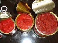 CANNED TOMATOE PASTE,