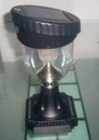Sell Solar Table Lamp