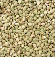 High Quality Buckwheat