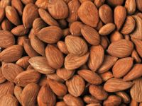 Bitter Apricot Seeds