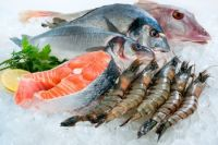 frozen seafood at wholesale