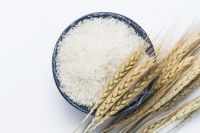 Quality Shiratak white rice