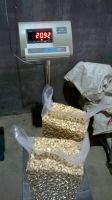 Cost-effective cashew nut price