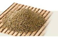 Mustard / Fennel Seeds