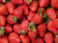 Good quality Raw Fresh frozen and Dried strawberry