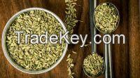 Fennel Seeds Grade A