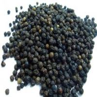 Cheap black coriander seed/Coriander Seeds/Split Coriander Seed Available For Sale