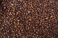 Bulk Robusta coffee/arabica coffee Available For whole sale