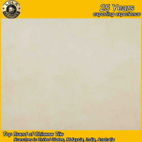 60x60 foshan factory good quality cheap price ceramic floor tile