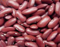 Red / White Kidney Beans