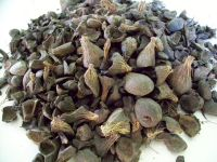 Palm kernel shell price is very competitive