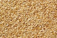 100% Natural Sesame Seeds for sale cheap price