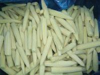 100% Frozen Baby Corn