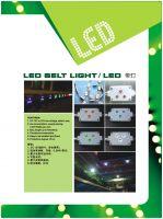 LED Belt Light