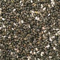 100% Top Quality Hemp Seeds