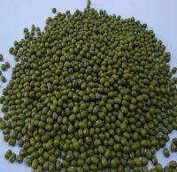 Green Mung Beans/Green Peas