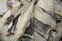 WET SALTED CAPE FISH - WILD CAUGHT AND NEVER FROZEN