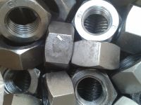 Sell Bolt with Heavy Hex Nuts