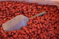 Sweet And Pure Red Date Red Jujube