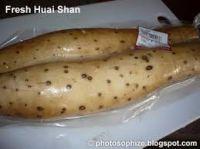 Chinese Yam/Shan Yao