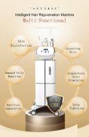 Scalp Care Skin Care Machine S66, Intelligent Hair Rejuvenation MJachine