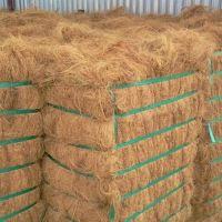 Natural raw coconut fiber