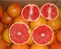 Fresh Organic Grapefruit