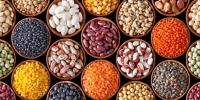 Light Speckled Kidney Bean(White Kidney Beans, Long Shape)Purple Red Speckled Kidney Beans, Coffee Beans, Black Beans, Soya Beans, Mung Beans