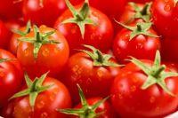Fresh Farm Tomatoes