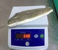 Low Price Frozen Fresh Arrowtooth Flounder Fillets