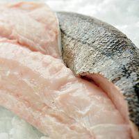 Boneless frozen canadian hake fish fillet