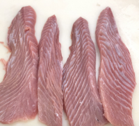 Tuna Belly/ Best seller canned tuna with IQF Yellowfin frozen Tuna Belly