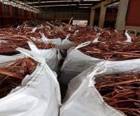 Wholesale Copper Wire Scrap/Millberry 99.99% Copper promotion price