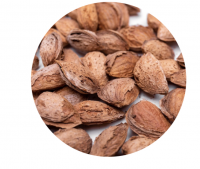 Almond Nuts Raw from California USA / Wholesale Almonds from California. Size 30/32