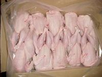 Frozen Whole Chicken and Parts !! Top Supplier !!!