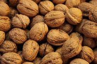 Walnuts in shell/walnuts kernels