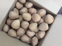 Dry Coconut Copra/Half Cut Copra/Ball Coconut Copra 2017!
