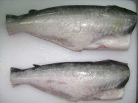 Frozen pangasius whole round gutted
