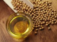 Premium Soybeans oil for export at best prices