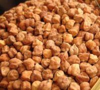 Premium grade Bangal Gram for export at best prices