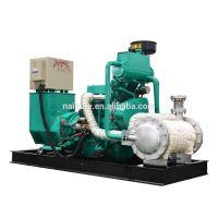 60kw biogas generator