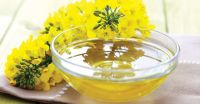 100% Top Grade Refined Rapeseed Oil for sale