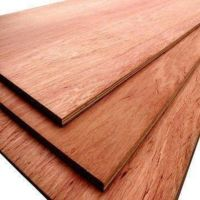 Red Hard Wood and Plywood for Furniture